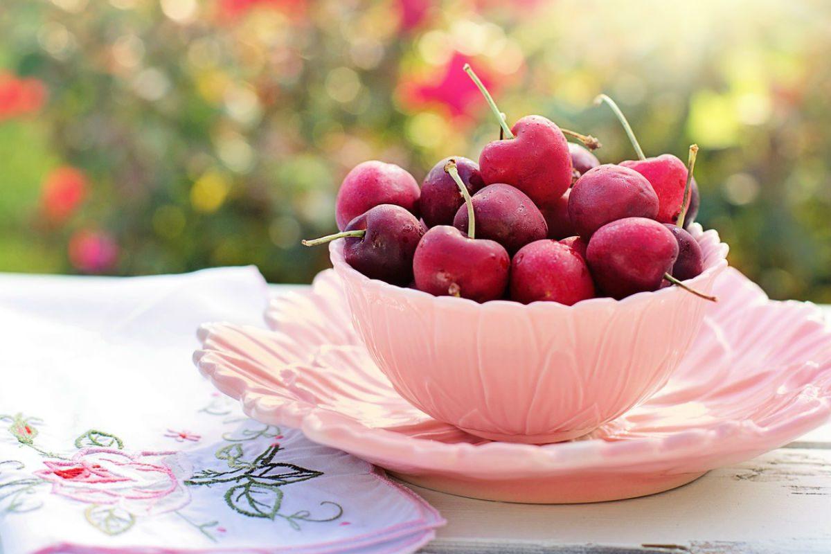 tipos de cerejas