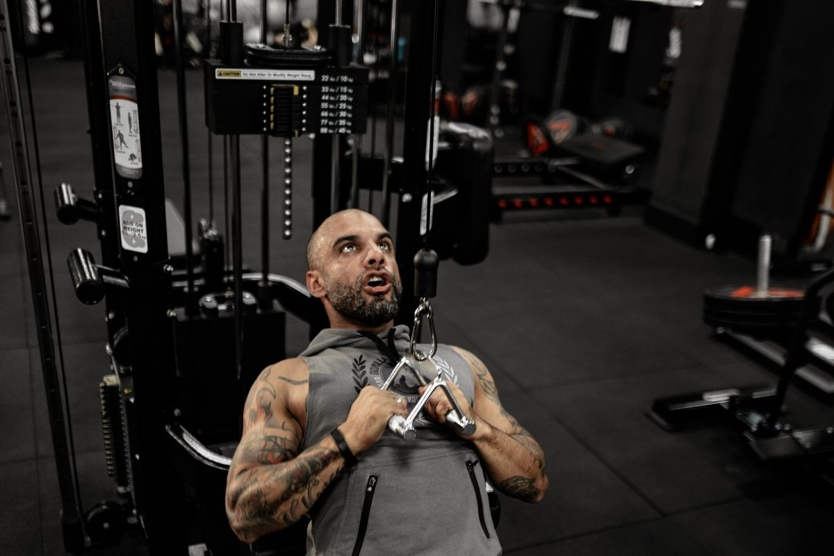 melhor estação de musculação