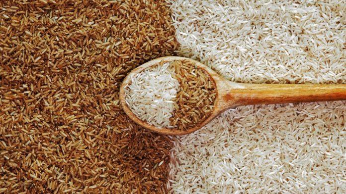 Qual arroz tem mais carboidrato e qual engorda menos: confira os tipos agora mesmo